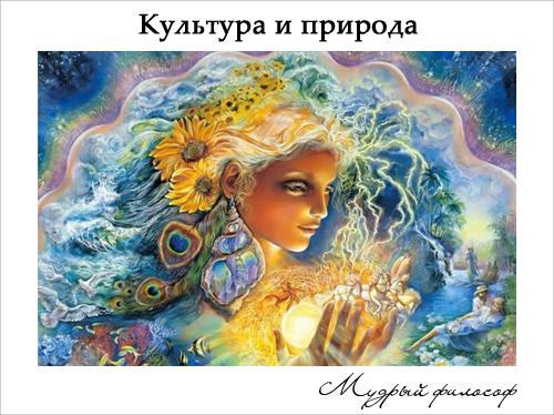 Природа и культура Мудрый Философ Культура и природа
